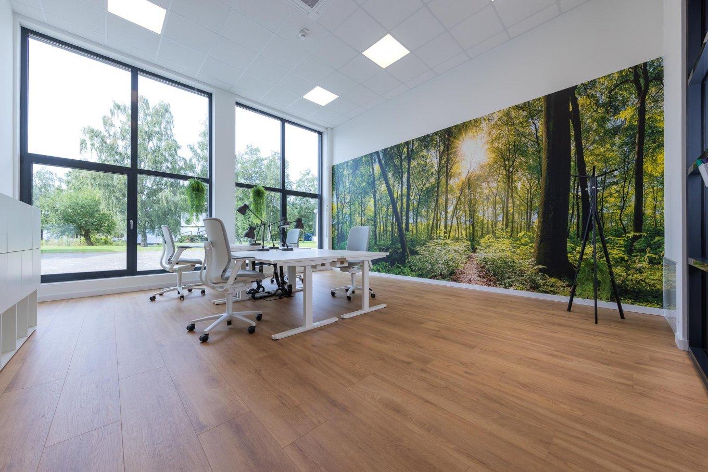 wineo workspace Laminatboden Büro silentOffice Bodenbelag Fußboden Wald Schreibtisch höhenverstellbar