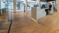 wineo Purline Bioboden Holzoptik Showroom Verkauf Rezeption
