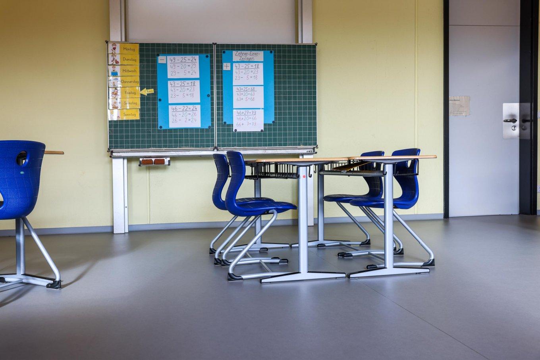 wineo PURLINE Bioboden Schule Klassenzimmer