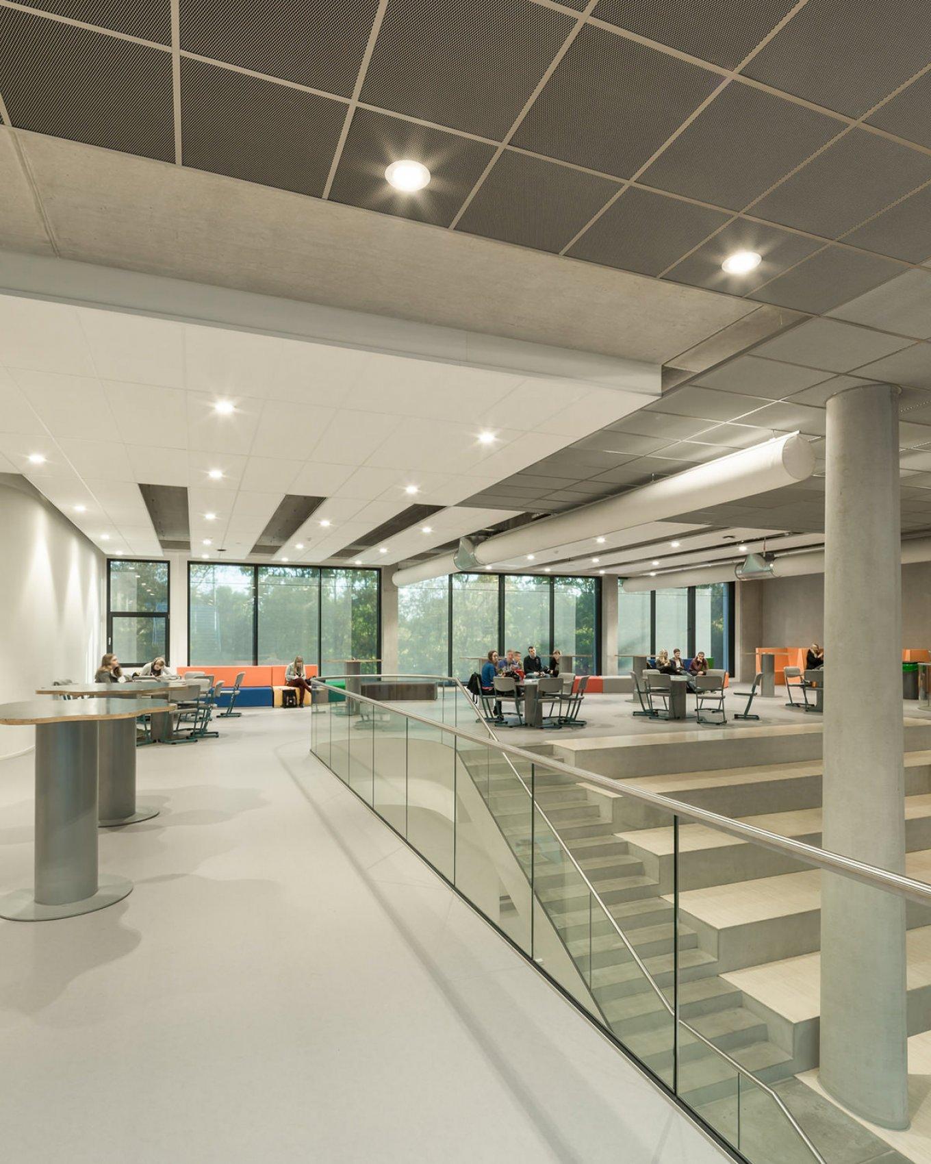 wineo Purline Bioboden Rollenware Foyer groß Treppen hell