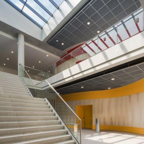 wineo Purline Bioboden Rollenware grau Foyer orange groß Treppen hell