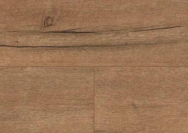 Detail_PL095C_Western_Oak_Desert.jpg