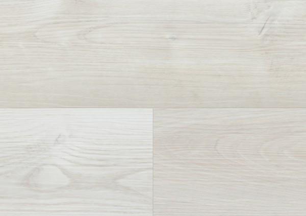 Detail_DLC00105_Dream_Pine_Light.jpg